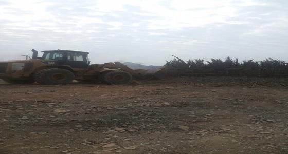 بالصور.. إزالة تعديات بمساحة 16 ألف متر بالمدينة المنورة