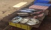 بالصور.. ضبط مخالفات صحية بالمحال التجارية في بلدية صامطة