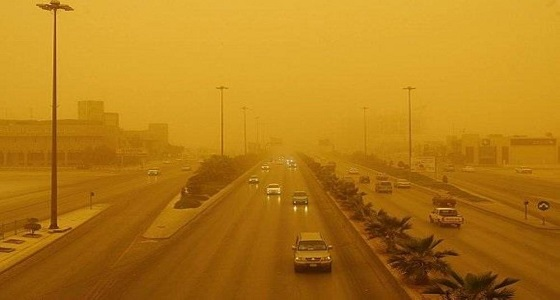 أخصائي بيئة يكشف عن فوائد الغبار الذي يحذر منه الجميع