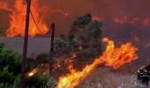 إعلان حالة الطوارئ في 4 أقاليم بإندونيسيا في ظل انتشار حرائق الغابات