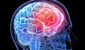 باحثون يكتشفون ما يحدث في الدماغ قبل الموت