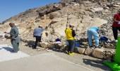 """بالفيديو والصور.. """" صدى """" تشارك في أضخم حملة تطوعية لنظافة جبل ثور"""