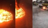 بالفيديو.. رد فعل صادم لرجلين لحظة تحول فأر لكرة نارية