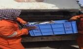ضبط 50 كيلو أسماك غير صالحة للاستهلاك الآدمي في العيص