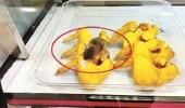 بالفيديو.. فأر يلتهم الدجاج داخل مطعم وجبات سريعة
