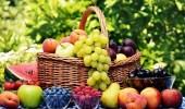 أفضل أنواع الفواكه المفيدة في الصيف