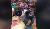 فتح بطن تمساح لاستخراج أشلاء صياد التهمه قبل قتله