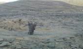 استهداف منازل يمنيين في أدمة ناطع بصواريخ حوثية