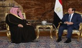 """بقيمة 10 مليار دولار.. إنشاء صندوق مصري سعودي في """" نيوم """""""