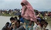 الأمم المتحدة تتدخل لحماية مسلمي الروهينجا من الفيلة البرية