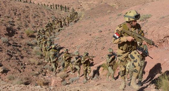 بالفيديو.. الجيش المصري يكبد الإرهابيين خسائر فادحة بسيناء خلال أيام