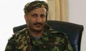 """لأول مرة.. الكشف عن حجم القوة العسكرية لـ """" طارق صالح """" بالأرقام"""