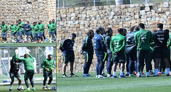 بالفيديو والصور.. الأخضر يستأنف تدريباته استعدادا للقاء بلجيكا