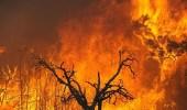 أستراليا تتعرض لأكثر من كارثة طبيعية في آن واحد