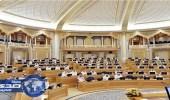 الشورى يطالب ببحث أسباب ارتفاع معدل الجريمة ببعض مناطق المملكة