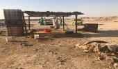 بالصور.. أمانة الرياض تزيل 17 مسلخا عشوائيا مخالفا