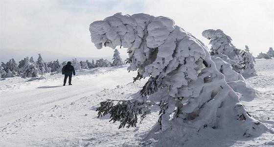 بالصور.. الثلوج تعطل أغلب مظاهر الحياة في إيرلندا