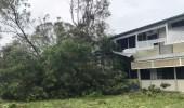"""سقوط عشرات الأشجار والأمطار الغزيرة بسبب إعصار """" نورا """" بأستراليا"""