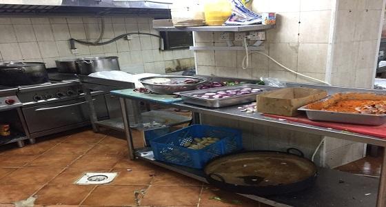 ضبط مطبخا عشوائيا وإتلاف 500 كيلو لحوم بأجياد الفرعية