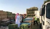 بالصور.. ضبط باعة أعلاف مخالفين في مكة