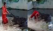 فيديو مروع لتمساح يغلق فمه على رأس رجل