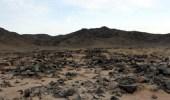 إطلاق مشروع التنقيب الأثري في موقع حليت بالدوادمي