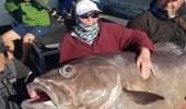 سيدة تصطاد سمكة بحجم الأريكة