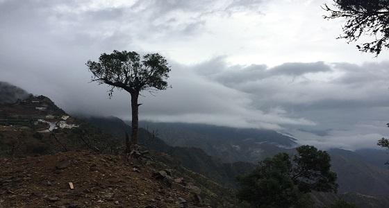الجبل الاسود جازان