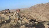 الجيش اليمني يعلن اعتقال 16 حوثيا في البيضاء