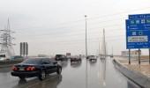 أمطار رعدية وغبار على 12 منطقة