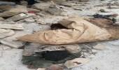 قتلى من الحوثيين في غارات لطيران التحالف العربي بجبهة صرواح