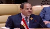 في إشارة لقطر.. السيسي: هناك أشقاء تآمروا مع الدول الأجنبية ضد العرب