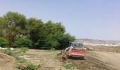 بالصور.. بلدية محايل تزيل مزرعة للورقيات تسقى بمياه الصرف الصحي