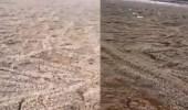 بالفيديو.. مشهد خيالي لسيول البرد بالمدينة المنورة