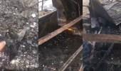 بالفيديو.. أمانة جدة تكشف حقيقة حرقها أحد المشروعات الناشئة