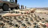 مقتل المسؤول عن زراعة الألغام بمليشيا الحوثي في الجوف