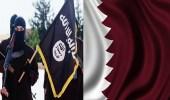 """"""" تغريدات """" تؤكد دعم رموز النظام القطري لحكم داعش"""
