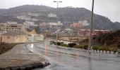 أمطار رعدية على الباحة تستمر حتى ساعة متأخرة