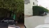 بالفيديو.. مواطن يحول الأشجار التي أمام منزله إلى مظلة