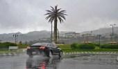 أمطار رعدية ورياح تعيق الرؤية في حائل