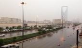 هطول أمطار رعدية مصحوبة برياح تحد الرؤية على الرياض