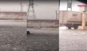 """بالفيديو.. تساقط البرد على طريق """" بقعاء – حائل """" بشكل مدهش"""