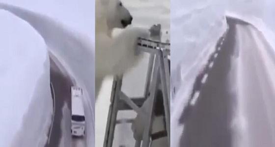 """بالفيديو.. أول برومو لبرنامج المقالب """" رامز تحت الثلج """""""
