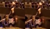 بالفيديو.. شباب مكة ينقذون رجل علق داخل سيارته في الأمطار