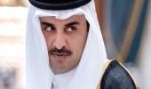تميم يواصل استفزاز المجتمع الدولي بتأييد نظام روحاني الإرهابي