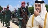 """إفريقيا تحبط أهداف """" تنظيم الحمدين """" الإرهابية على أراضيها"""