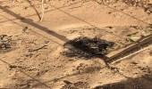 القصيم تشهد ثاني جريمة بيئية خلال أيام.. وحرق 150 شجرة بالأسيد