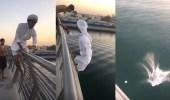 بالفيديو.. الشرطة تطيح بـ3 مراهقين لقفزهم من فوق جسر قناة دبي