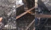 """بالفيديو.. حريق ضخم في برج """" زن """" بدبي"""