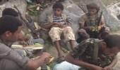 بالفيديو.. مصور حوثي يقر بهزيمة المليشيات